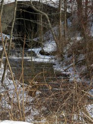 One of my favorite little streams.