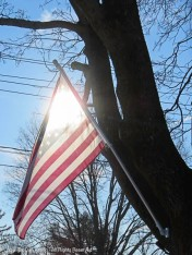 One flag - Every American!