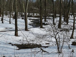 The water in the distance is the Farmington River. This park is less than a mile from where the Farmington drains into the Connecticut River.