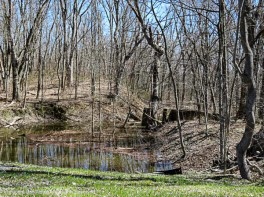 The runoff pond from the highway rolls down to the river.