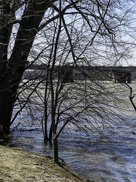The Connecticut River is running high after 4 days of rain.