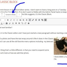 """""""Convert to blocks"""" will create a separate block for each paragraph and the image. Pressing the Plus at the bottom right will let you add a new block below this one. Everything shown is part of one Classic block."""