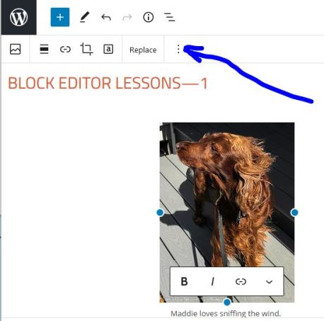 Obviously, that's the block action menu ;-)