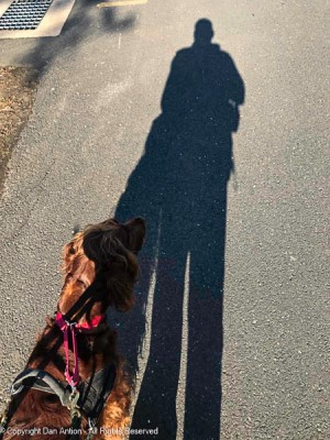 """""""Make sure I'm in the picture. People don't just want to see our shadows."""""""