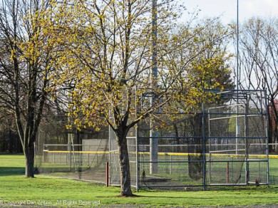 The batting cage is open for business.