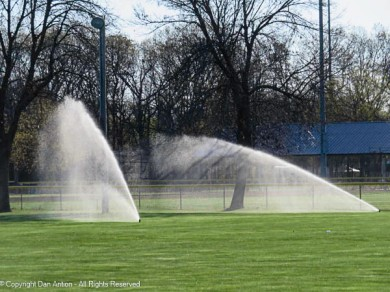It begins. They are testing the sprinklers, so I have a new season of frustration trying to get the perfect sprinkler picture.