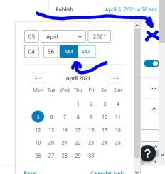 Make sure you set the time, the AM/PM and then click outside the calendar (X) to close (and save).