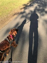 """""""OK, Maddie, get in the picture with our shadows."""""""