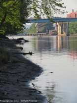 The Connecticut River had been running quite high. It's receding now.