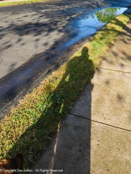 I crop closer on the puddle, but Maddie wanted her shadow included.