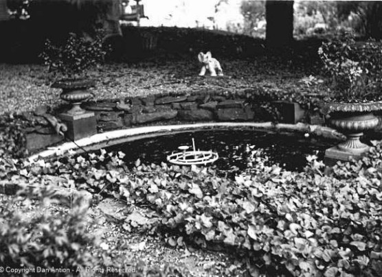 NRHP-Photo - a small pool in the garden.