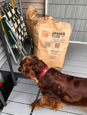 """Maddie never likes to see """"trash"""" on her porch."""