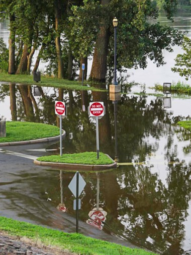 Great River Park after the sustained rains of July. That's where I usually park.