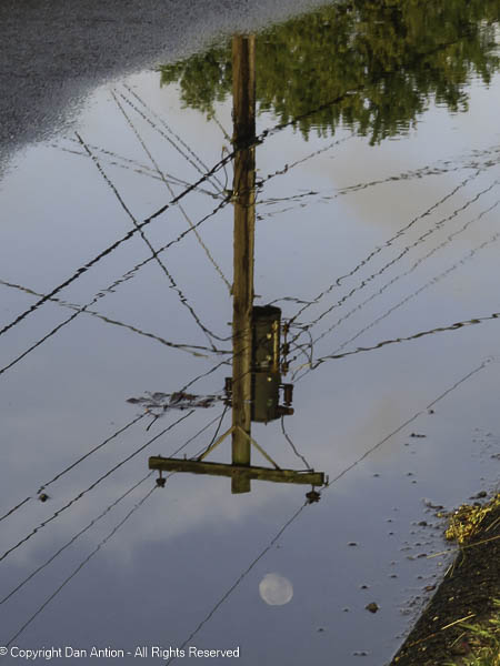 I was able to find a spot where the moon over the utility pole was in the puddle