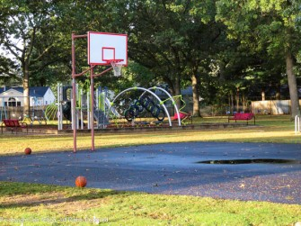 Uh oh. Maddie loves that puddle and she likes to investigate basketballs.