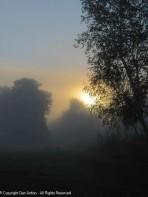 Sunrise behind the fog